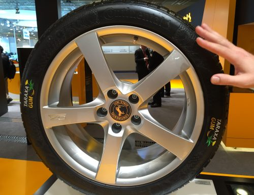 From Russia with love – dandelions to Continental taraxagum tires