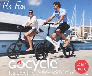 GOCYCLE 300×250 NO url