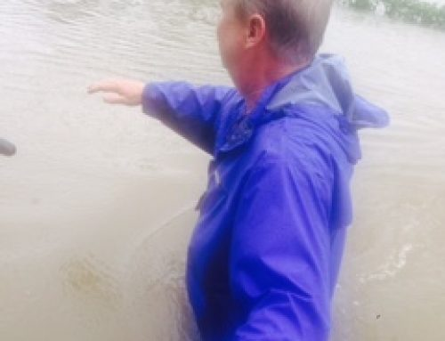 Baton Rouge flood victim's Dry Pillow Diary