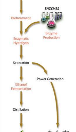 cellulose ethanol