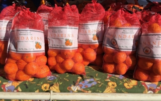 Mountain Mandarin Orange Festival