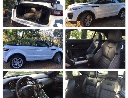 Range Rover Evoque convertible, turbo, carchat