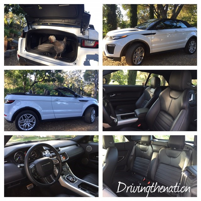 Range Rover Evoque convertible, turbo, carchat