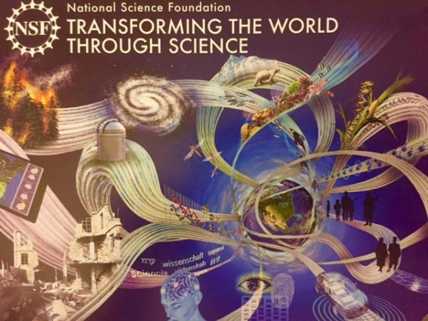 The National Science Foundation (NSF)