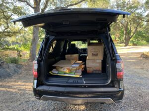 2020 Ford Expedition MAX cargo